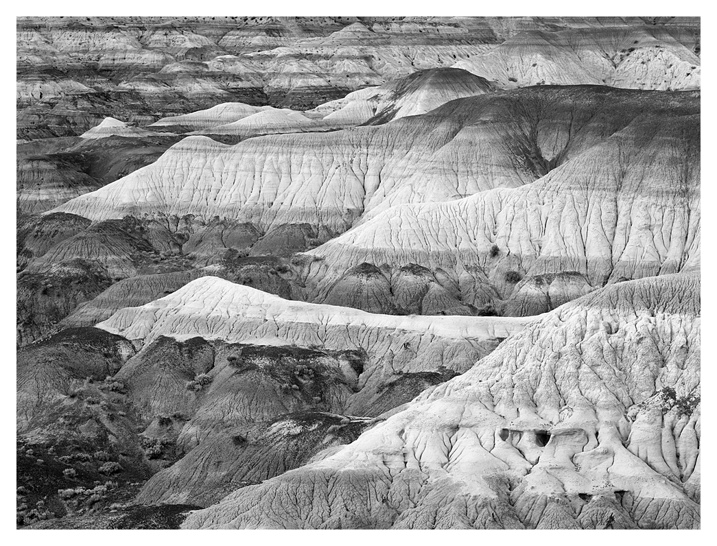 Badlands, Angel Peak, New Mexico, 2011
